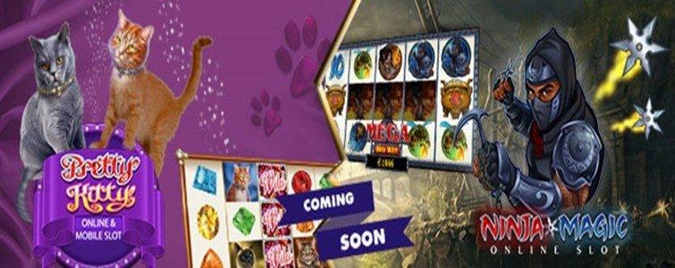 Microgaming Video Slot