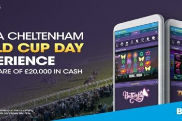 cheltenham gold cup day