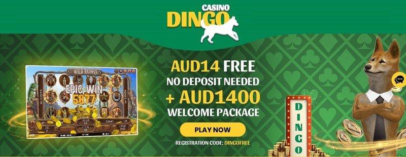 Casino Dingo Bonuses