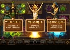 Nirvana Free Spins Feature