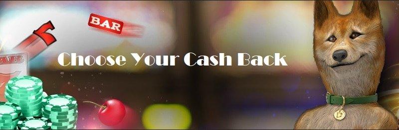 Casino Dingo Cashback Bonus
