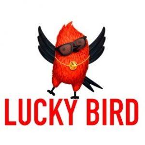 Lucky bird clothing