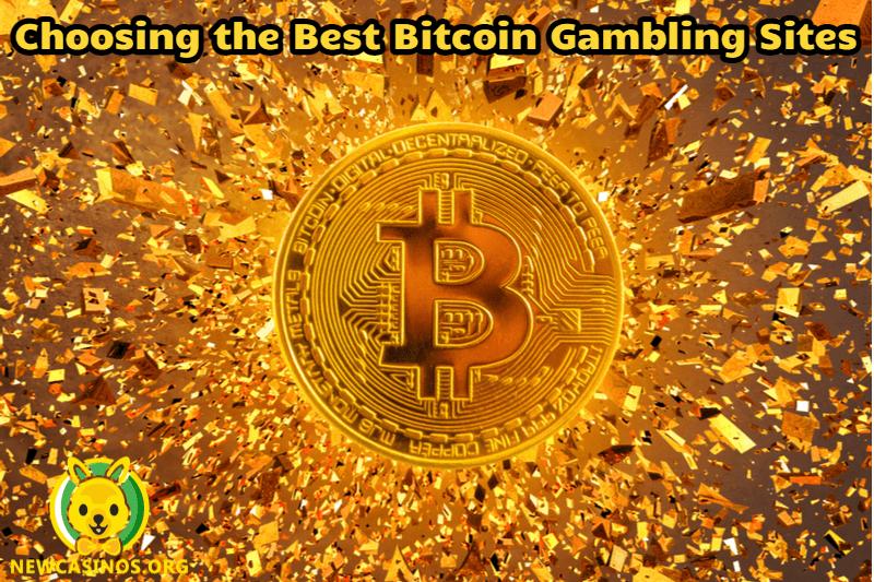 Choosing the Best Bitcoin Gambling Sites