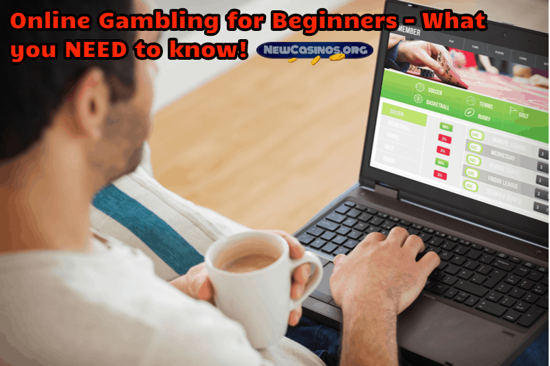 Online Gambling for Beginners – What you NEED to know