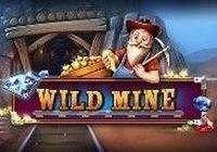 Wild Mine Slot