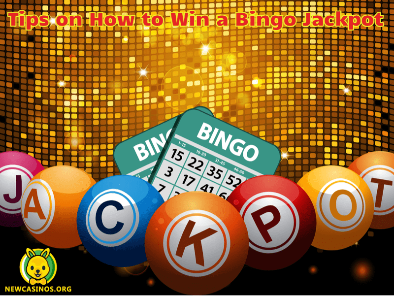Tips on How to Win a Bingo Jackpot