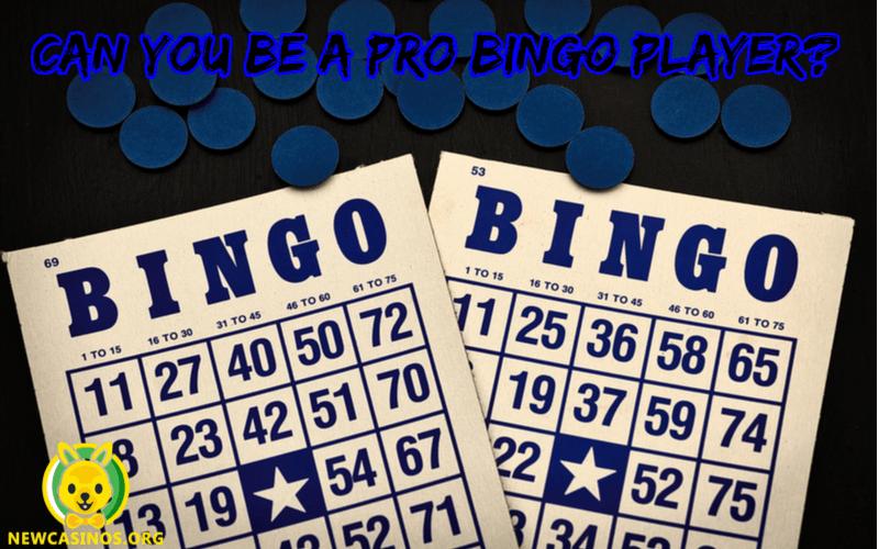 Bisakah Anda Menjadi Pemain Bingo Pro?